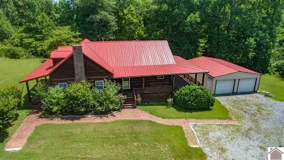 Calloway County, Marshall County Single Family Home For Sale: 643 Poplar Springs Drive