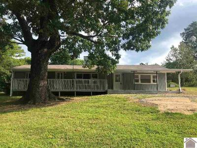 Calloway County Single Family Home For Sale: 544 Cypress Trail