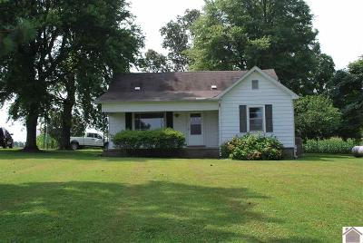 Graves County Single Family Home For Sale: 2371 State Route 94 W.