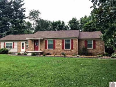 Marshall County Single Family Home For Sale: 2100 Little Cypress Rd