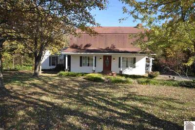 Marshall County Single Family Home For Sale: 2359 Jackson School Rd.