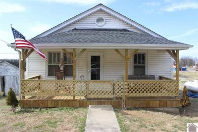 Livingston County Single Family Home For Sale: 225 Wilson Avenue