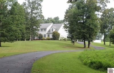 Graves County Single Family Home For Sale: 252 Clark Road
