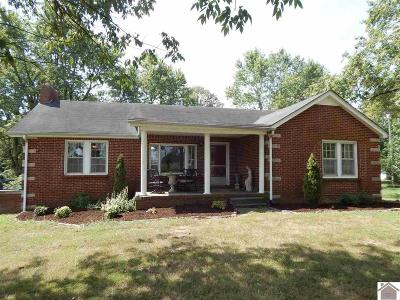 Calloway County, Marshall County Single Family Home For Sale: 3695 State Route 121 South