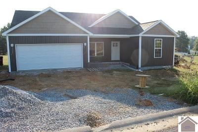 Graves County Single Family Home For Sale: 300 Parkway Drive