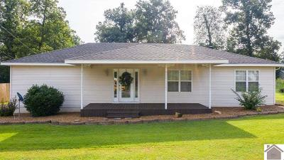 Graves County Single Family Home For Sale: 1666 State Route 45 N