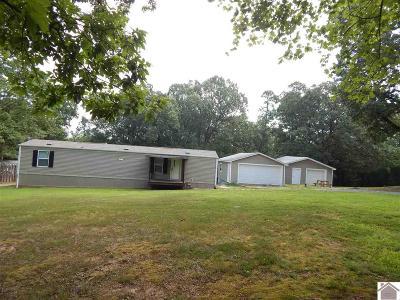 Benton Manufactured Home For Sale: 150 Jonathan Pt.