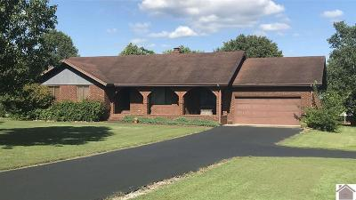 Marshall County Single Family Home For Sale: 212 Ash Street