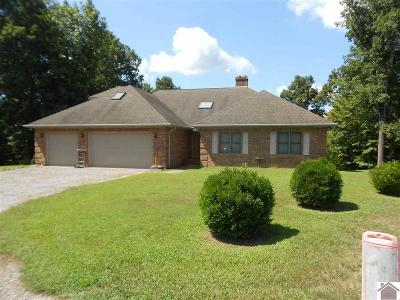 Lyon County, Trigg County Single Family Home For Sale: 257 Pelican Lane