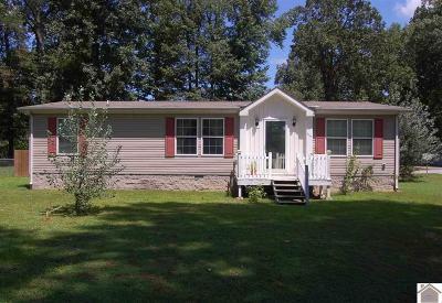 Paducah Manufactured Home For Sale: 3030 Hovekamp