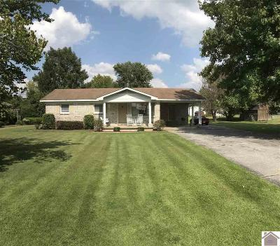 Livingston County Single Family Home For Sale: 515 Blankenship Rd