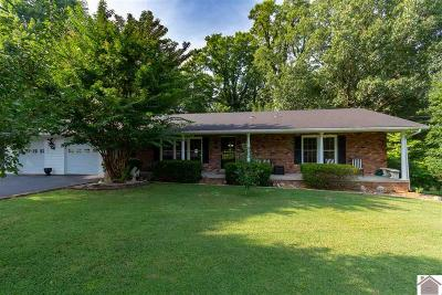 Marshall County Single Family Home For Sale: 204 Allen Heights Road