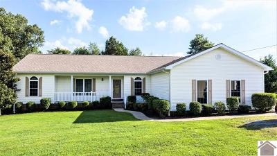 Calloway County, Marshall County Single Family Home For Sale: 124 & 130 Henry Sledd Road