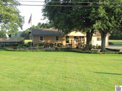 Calloway County, Marshall County Single Family Home For Sale: 6893 Us Highway 62