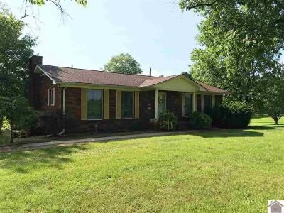 Calloway County, Marshall County Single Family Home For Sale: 2052 Tom Taylor Trail