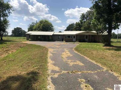 Marshall County Single Family Home For Sale: 1527 Scale Rd.