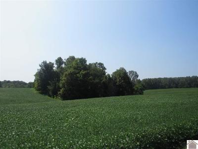 Cadiz Farm For Sale: Bush Road