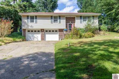 Paducah Single Family Home For Sale: 322 Anita Dr.