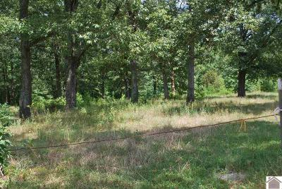 Paducah Residential Lots & Land For Sale: 3524 Husband Road