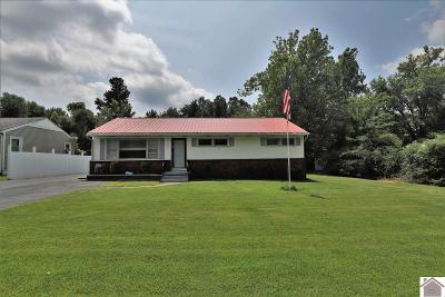 Paducah Single Family Home For Sale: 257 Seminole Dr