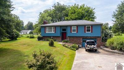 Paducah Single Family Home For Sale: 1015 Massac Church Road