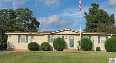 Eddyville Single Family Home For Sale: 214 Hillwood St