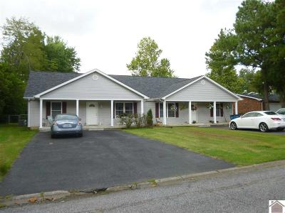 Paducah Multi Family Home For Sale: 7311 Annie Ln
