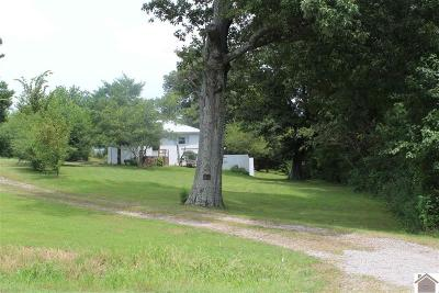 Mayfield Single Family Home For Sale: 4924 State Route 121 South
