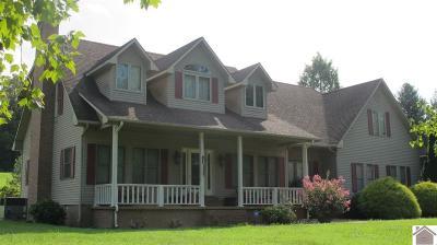 Eddyville Single Family Home For Sale: 735 St Rt 3305 S
