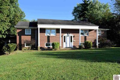 Mayfield Single Family Home For Sale: 614 Weda Ave