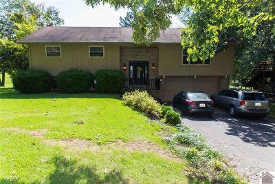 Gilbertsville Single Family Home For Sale: 140 Boisedark Circle