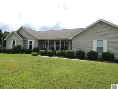 Kentucky Lake Area Homes for sale, Property search in