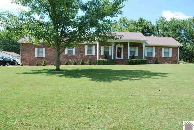 Mayfield Single Family Home For Sale: 4609 State Route 303