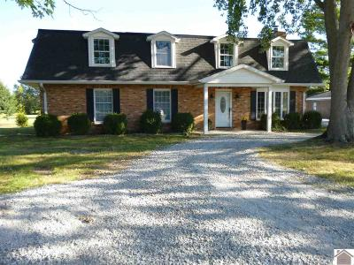Paducah Single Family Home For Sale: 6725 Old Hinkleville Rd