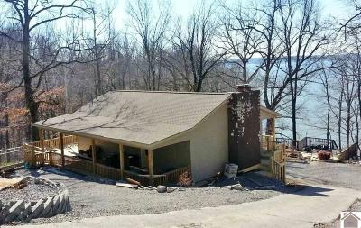 Cadiz, Trigg County, Eddyville, Kuttawa, Grand Rivers Single Family Home For Sale: 101 Smith Rd