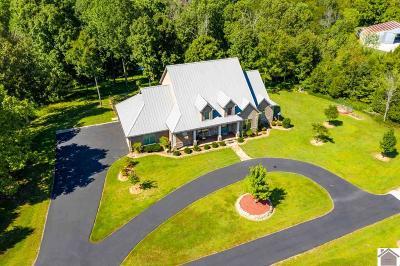 Princeton KY Single Family Home For Sale: $638,000
