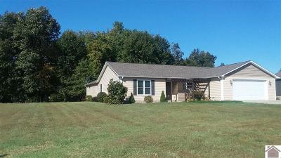 Mayfield Single Family Home For Sale: 161 Piney Point