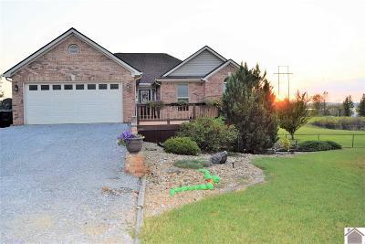 Cadiz KY Single Family Home For Sale: $299,000