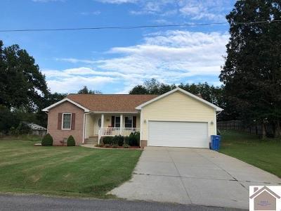 Princeton KY Single Family Home For Sale: $149,900