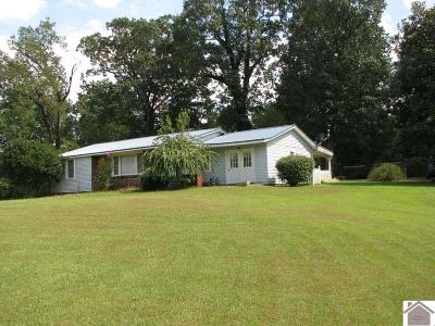 Benton Single Family Home For Sale: 7127 Mayfield Highway