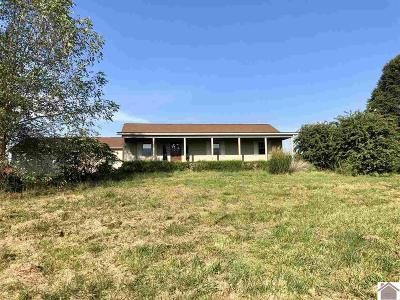 Benton Single Family Home For Sale: 171 Murray Highway