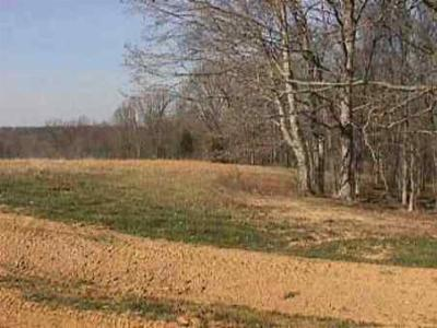 Lyon County Residential Lots & Land For Sale: #18 South Park Subdivision