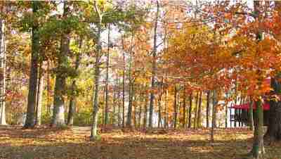 Calloway County Residential Lots & Land For Sale: Lot# 64 Bayridge