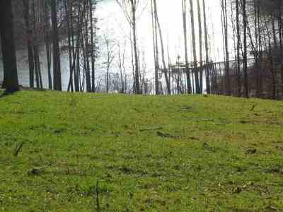 Livingston County, Lyon County, Trigg County Residential Lots & Land For Sale: 35, 36 & 37 Cobblestone Ct.