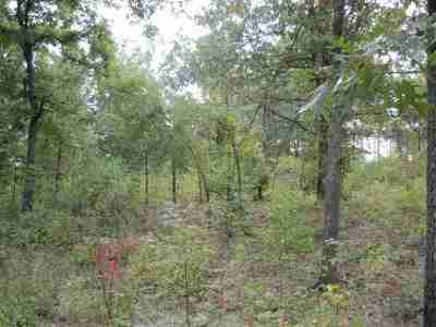 Marshall County Residential Lots & Land For Sale: 208 Delaware