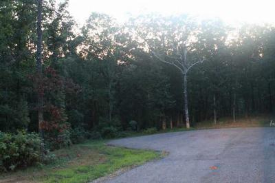 Calloway County Residential Lots & Land For Sale: Lot 86 Blackhawk Ln