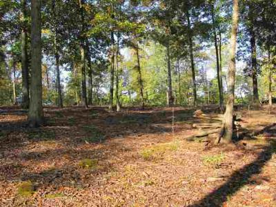 Residential Lots & Land For Sale: Lot 19 Hills Hollow Rd