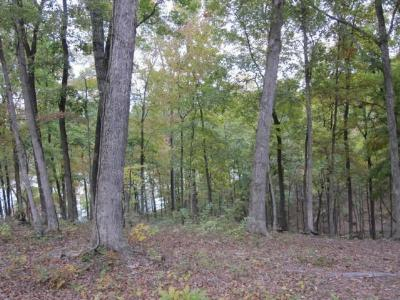 Calloway County, Marshall County, Henry County, Tennessee County Residential Lots & Land For Sale: Lot 43 Old Eagle Road