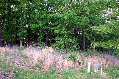 Calloway County, Marshall County, Henry County, Tennessee County Residential Lots & Land For Sale: Lot # 41 N Legacy Cove