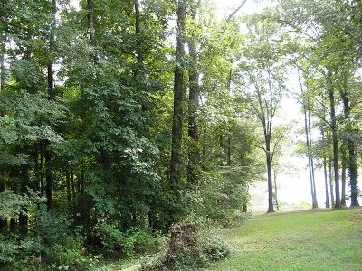 Lyon County Residential Lots & Land For Sale: Lot 39 Cobblestone Ct